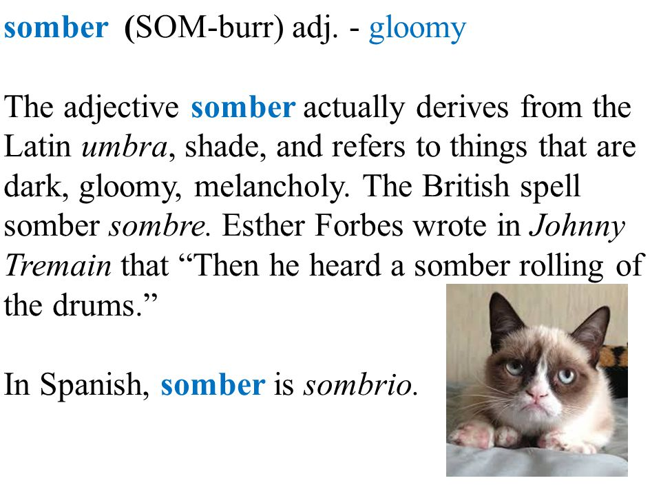 somber (SOM-burr) adj. - gloomy The adjective somber actually derives from the Latin umbra, shade, and refers to things that are dark, gloomy, melanch