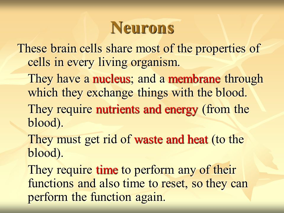 Neurons These brain cells share most of the properties of cells in every living organism.
