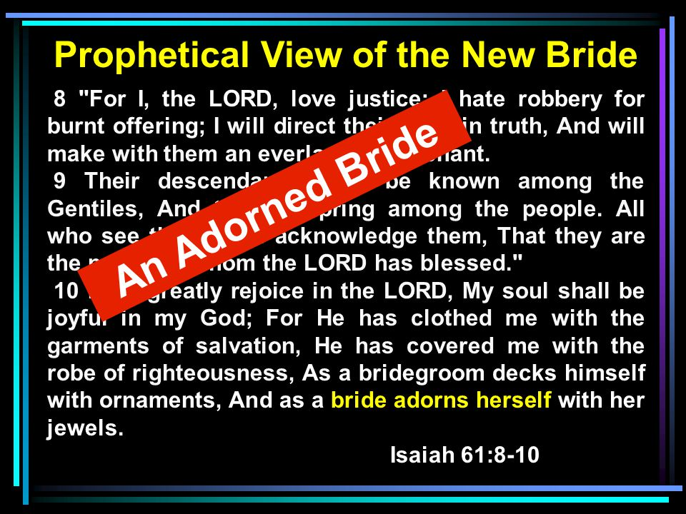 Prophetical View of the New Bride 8