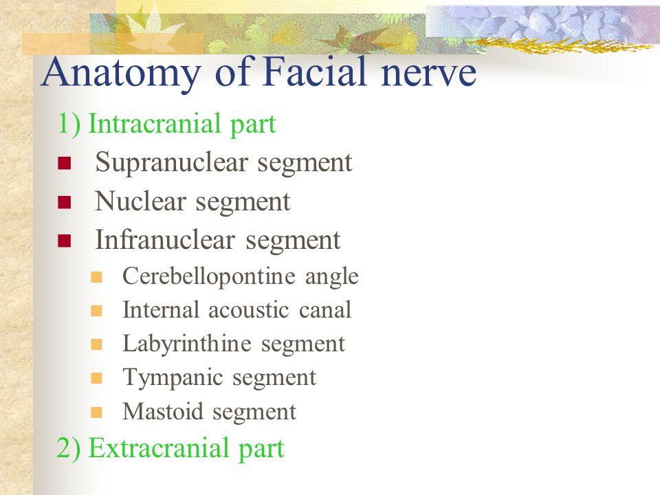 Anatomy of Facial nerve 1) Intracranial part Supranuclear segment Nuclear segment Infranuclear segment Cerebellopontine angle Internal acoustic canal Labyrinthine segment Tympanic segment Mastoid segment 2) Extracranial part