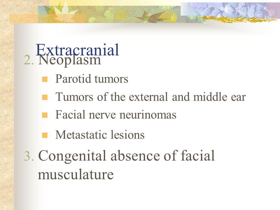 Extracranial 2.