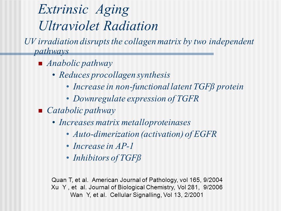 Extrinsic Aging Ultraviolet Radiation UV irradiation disrupts the collagen matrix by two independent pathways Anabolic pathway Reduces procollagen synthesis Increase in non-functional latent TGFß protein Downregulate expression of TGFR Catabolic pathway Increases matrix metalloproteinases Auto-dimerization (activation) of EGFR Increase in AP-1 Inhibitors of TGFß Quan T, et al.