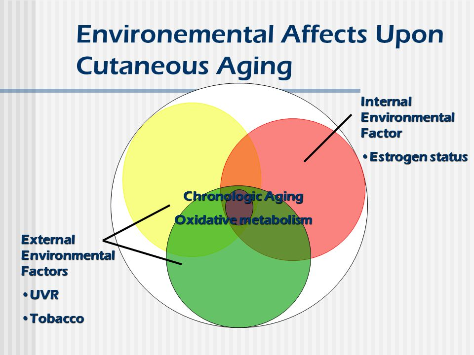Environemental Affects Upon Cutaneous Aging External Environmental Factors UVRUVR TobaccoTobacco Internal Environmental Factor Estrogen statusEstrogen status Chronologic Aging Oxidative metabolism