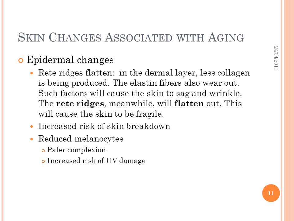 S KIN C HANGES A SSOCIATED WITH A GING Epidermal changes Rete ridges flatten: in the dermal layer, less collagen is being produced. The elastin fibers