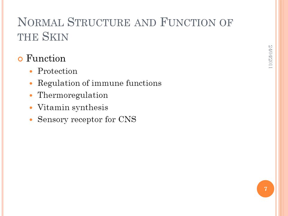 N ORMAL S TRUCTURE AND F UNCTION OF THE S KIN Function Protection Regulation of immune functions Thermoregulation Vitamin synthesis Sensory receptor f