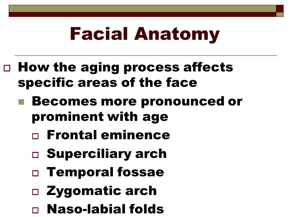Facial Anatomy  How the aging process affects specific areas of the face Becomes more pronounced or prominent with age  Frontal eminence  Supercili