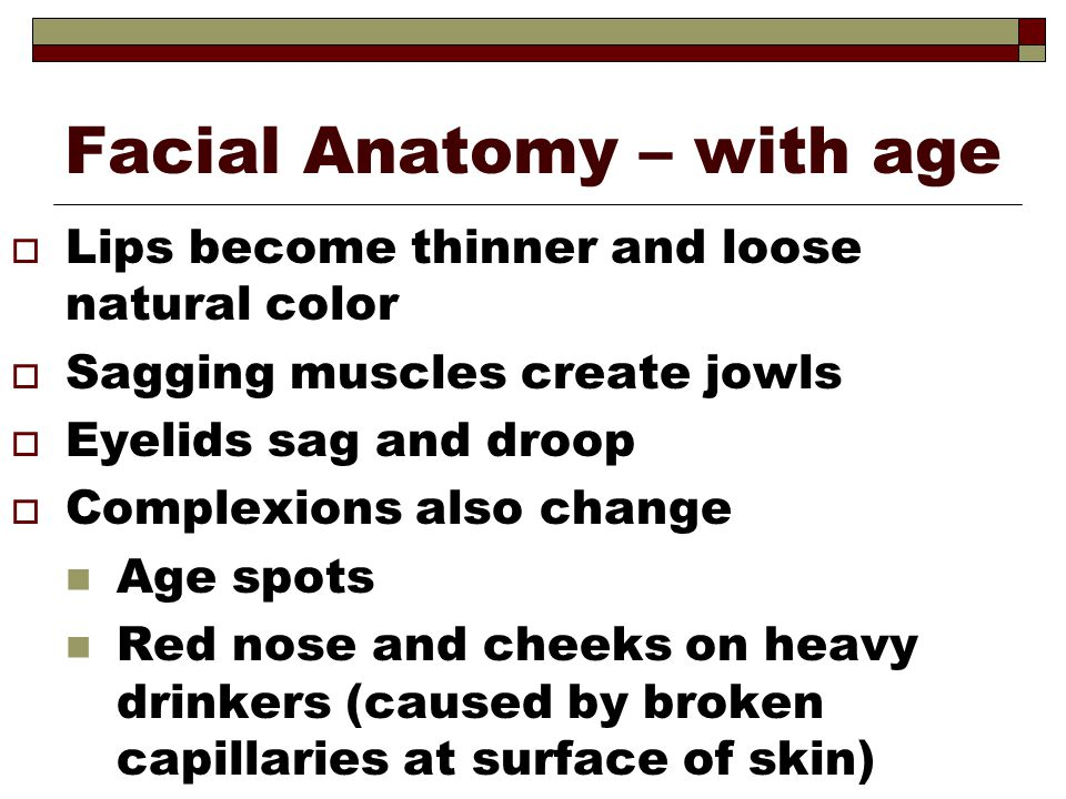 Facial Anatomy – with age  Lips become thinner and loose natural color  Sagging muscles create jowls  Eyelids sag and droop  Complexions also chan