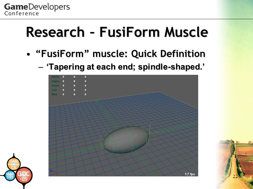 "22 Research – FusiForm Muscle ""FusiForm"" muscle: Quick Definition""FusiForm"" muscle: Quick Definition –'Tapering at each end; spindle-shaped.'"