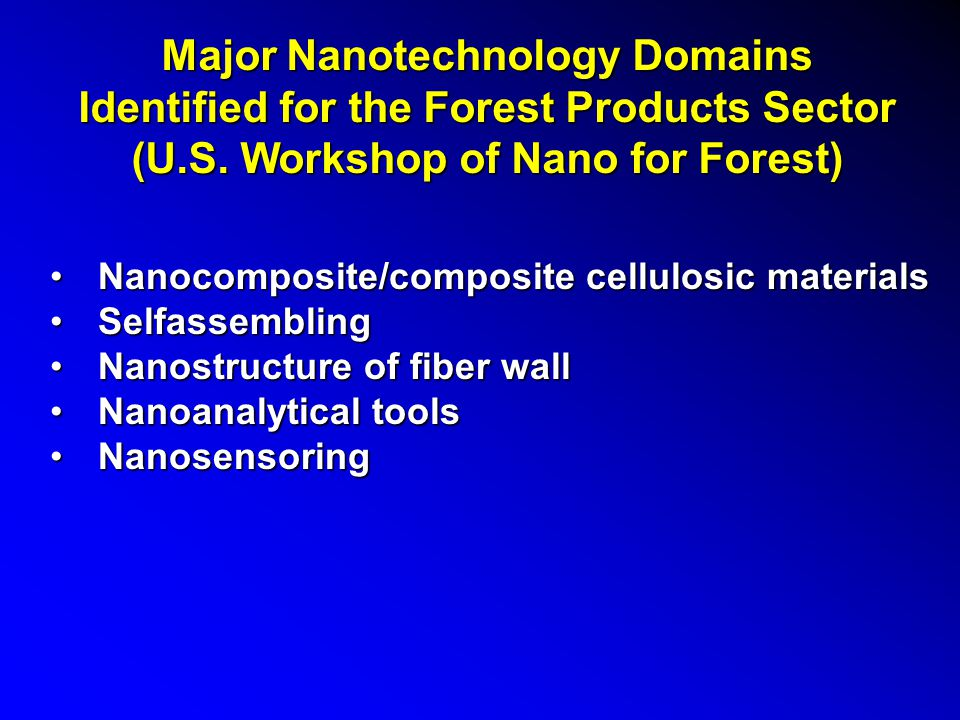 Nanotechnology in Forest and Paper Industry A roadmap of Towards a European Strategy for Nanotechnology was developed in Brusseles, May, 2004, Commission of the European CommunitiesA roadmap of Towards a European Strategy for Nanotechnology was developed in Brusseles, May, 2004, Commission of the European Communities A roadmap of Nanotechnolgy for U.S.