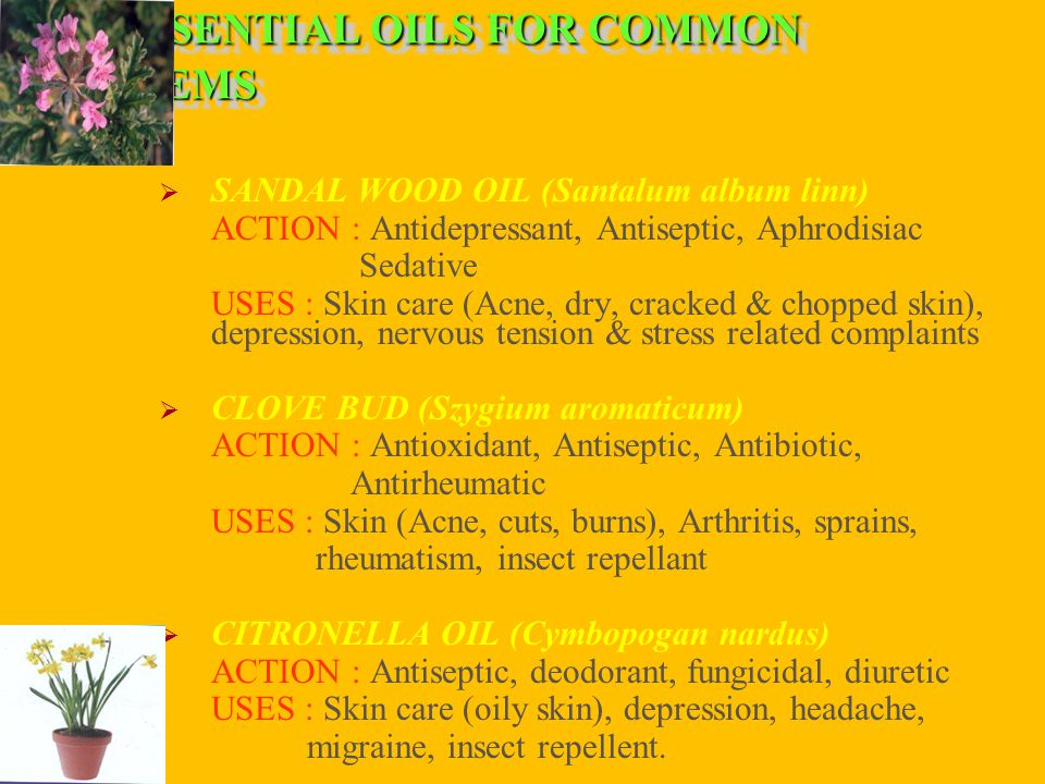 ESSENTIAL OILS FOR COMMON PROBLEMS  SANDAL WOOD OIL (Santalum album linn) ACTION : Antidepressant, Antiseptic, Aphrodisiac Sedative USES : Skin care (Acne, dry, cracked & chopped skin), depression, nervous tension & stress related complaints  CLOVE BUD (Szygium aromaticum) ACTION : Antioxidant, Antiseptic, Antibiotic, Antirheumatic USES : Skin (Acne, cuts, burns), Arthritis, sprains, rheumatism, insect repellant  CITRONELLA OIL (Cymbopogan nardus) ACTION : Antiseptic, deodorant, fungicidal, diuretic USES : Skin care (oily skin), depression, headache, migraine, insect repellent.