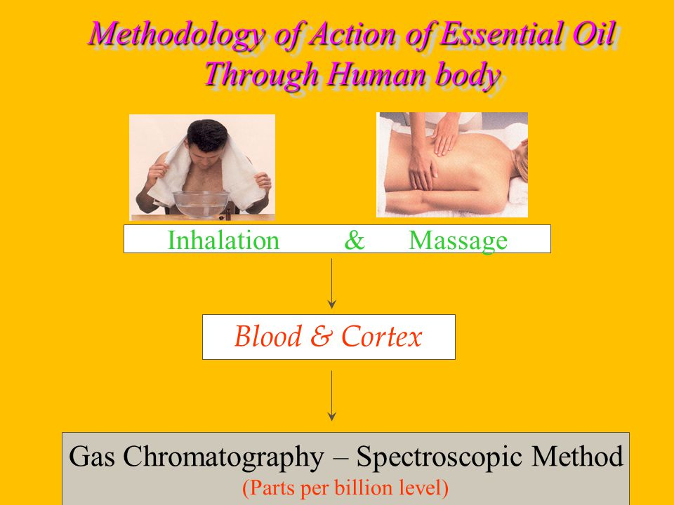 Methodology of Action of Essential Oil Through Human body Blood & Cortex Gas Chromatography – Spectroscopic Method (Parts per billion level) Inhalation & Massage