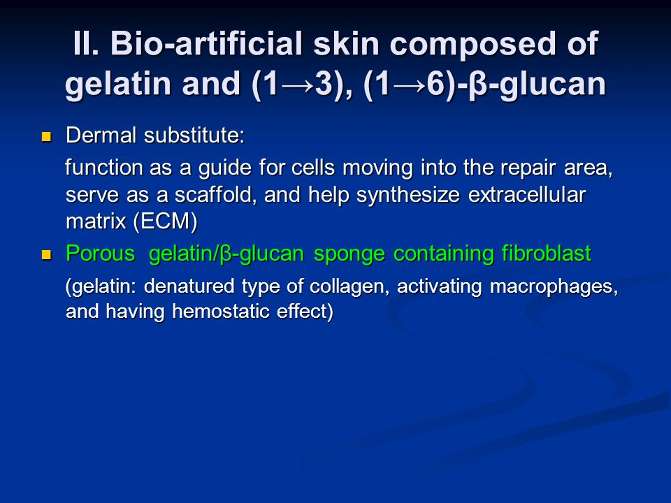 II. Bio-artificial skin composed of gelatin and (1→3), (1→6)-β-glucan Dermal substitute: Dermal substitute: function as a guide for cells moving into