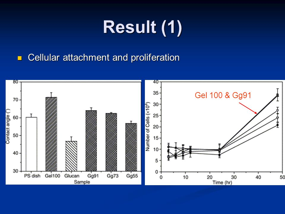 Result (1) Cellular attachment and proliferation Cellular attachment and proliferation Gel 100 & Gg91