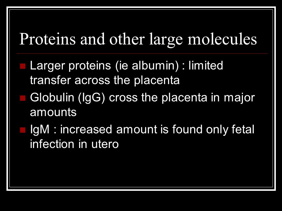 Proteins and other large molecules Larger proteins (ie albumin) : limited transfer across the placenta Globulin (IgG) cross the placenta in major amounts IgM : increased amount is found only fetal infection in utero
