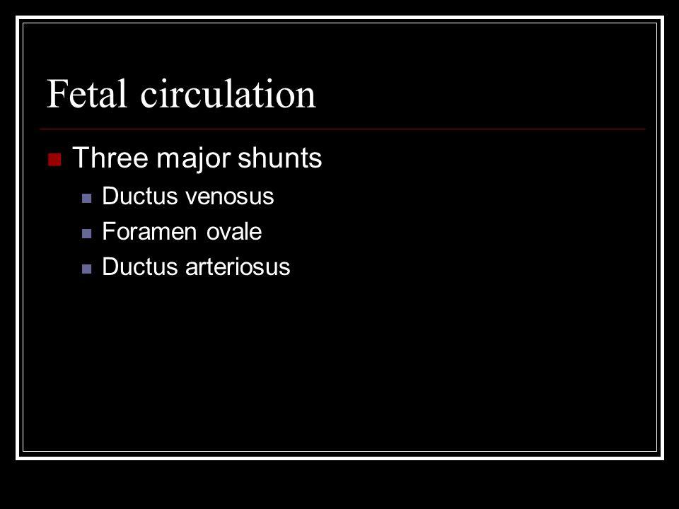 Fetal circulation Three major shunts Ductus venosus Foramen ovale Ductus arteriosus