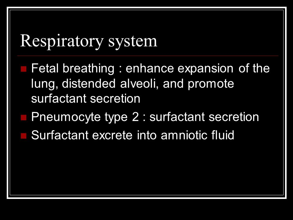Respiratory system Fetal breathing : enhance expansion of the lung, distended alveoli, and promote surfactant secretion Pneumocyte type 2 : surfactant secretion Surfactant excrete into amniotic fluid