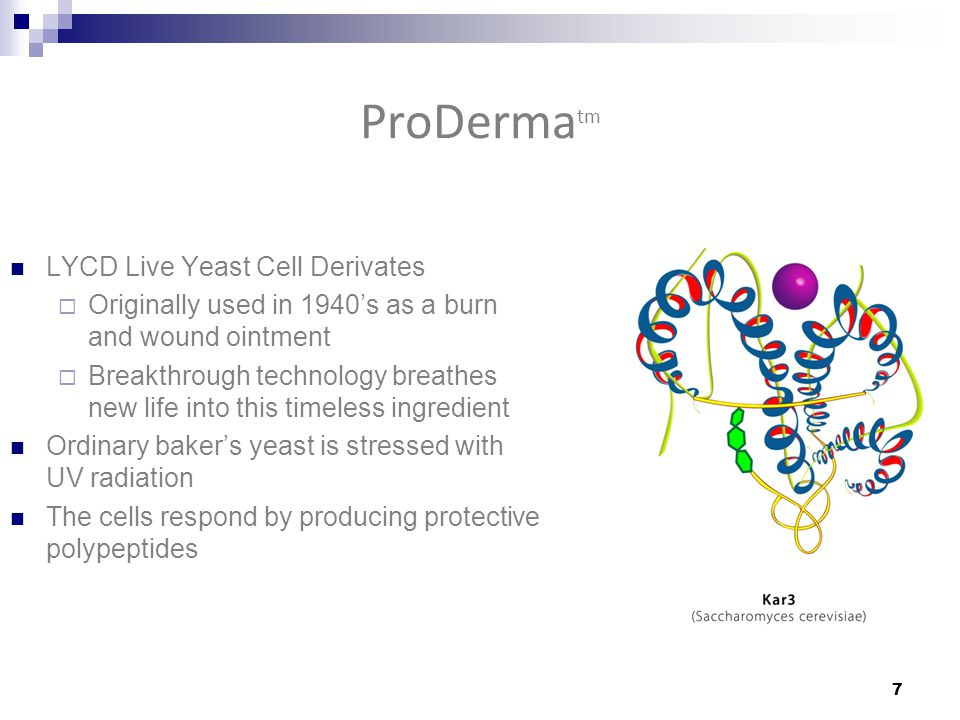 ProDerma tm LYCD Live Yeast Cell Derivates  Originally used in 1940's as a burn and wound ointment  Breakthrough technology breathes new life into this timeless ingredient Ordinary baker's yeast is stressed with UV radiation The cells respond by producing protective polypeptides 7