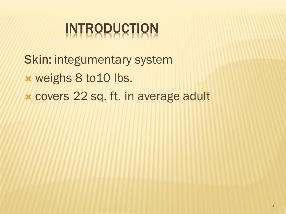 5 Skin: integumentary system  weighs 8 to10 lbs.  covers 22 sq. ft. in average adult