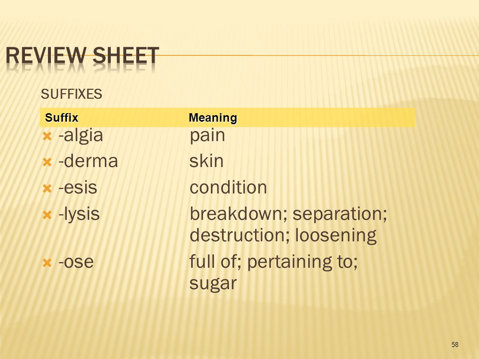58 SUFFIXES  -algia pain  -derma skin  -esis condition  -lysis breakdown; separation; destruction; loosening  -ose full of; pertaining to; sugar Suffix Meaning