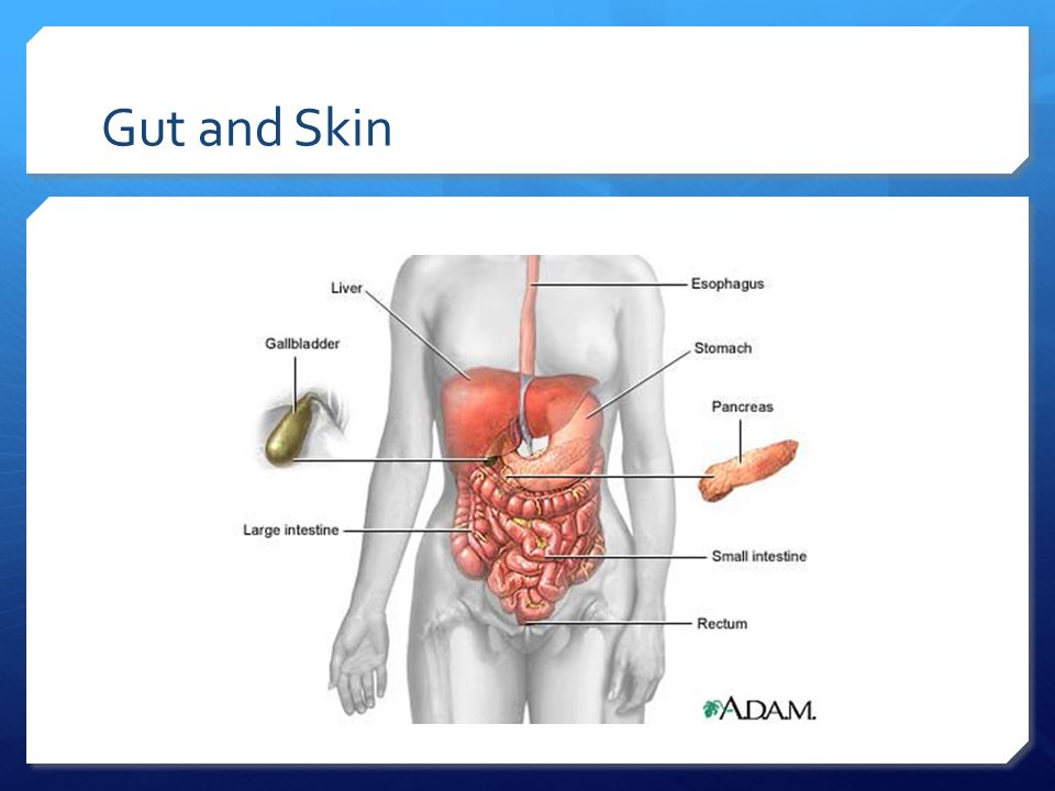 Gut and Skin