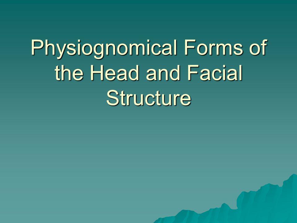 Forms of the Facial Profile  1) Vertical Profile  2) Convex Profile  3) Concave Profile