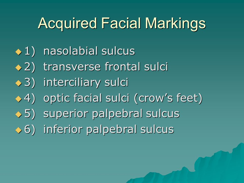 Acquired Facial Markings  1) nasolabial sulcus  2) transverse frontal sulci  3) interciliary sulci  4) optic facial sulci (crow's feet)  5) superior palpebral sulcus  6) inferior palpebral sulcus