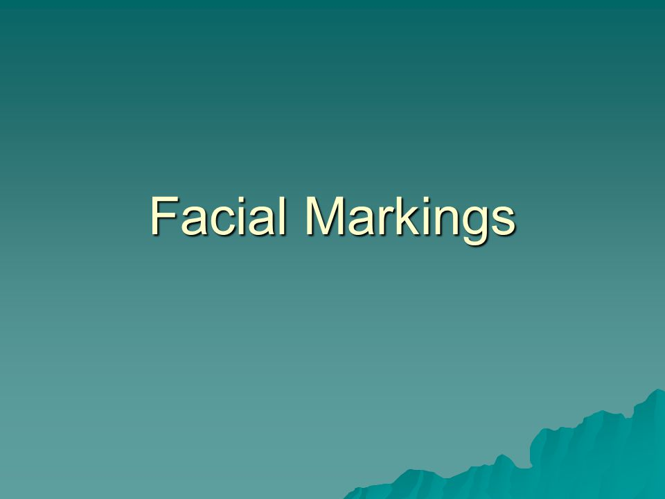 Facial Markings