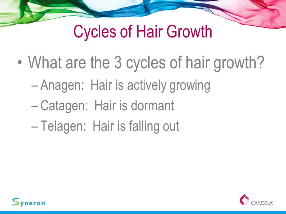 Cycles of Hair Growth What are the 3 cycles of hair growth? –Anagen: Hair is actively growing –Catagen: Hair is dormant –Telagen: Hair is falling out