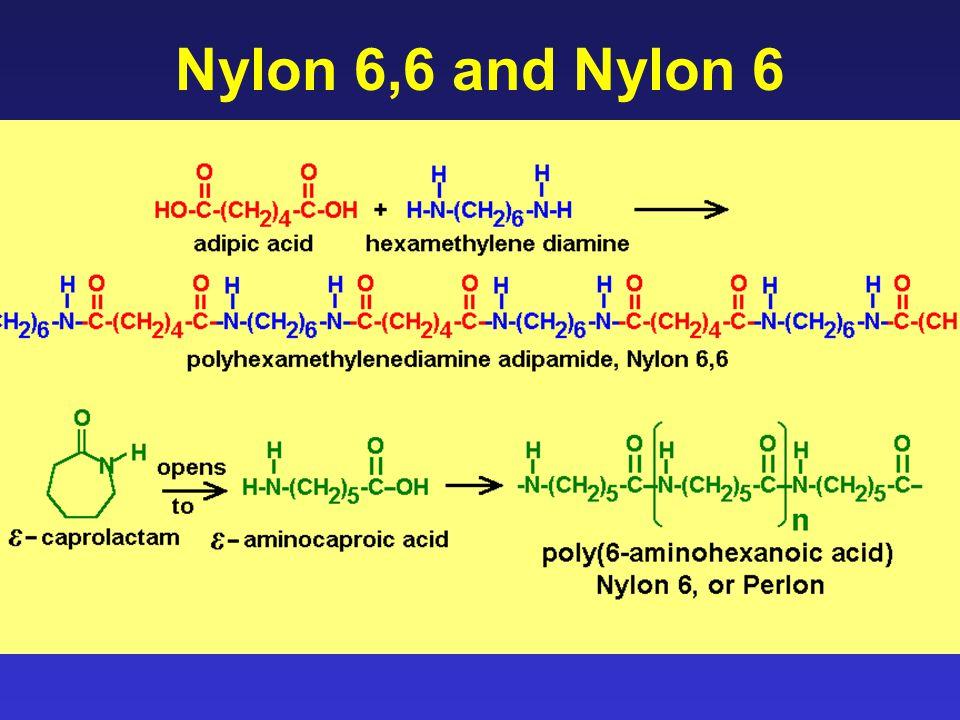 Nylon 6,6 and Nylon 6