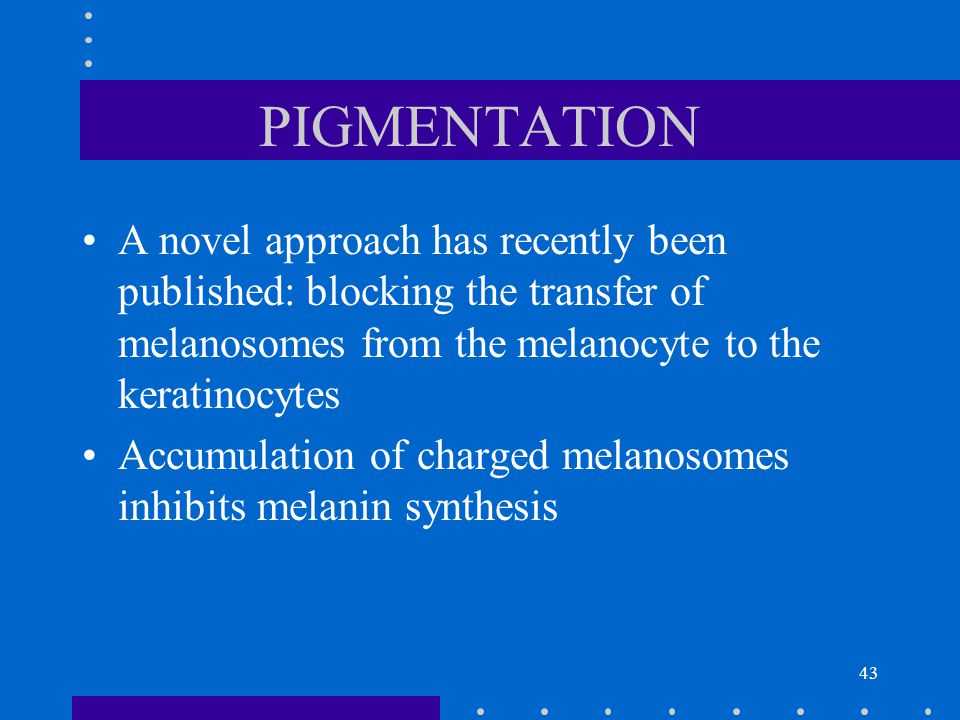 43 PIGMENTATION A novel approach has recently been published: blocking the transfer of melanosomes from the melanocyte to the keratinocytes Accumulati