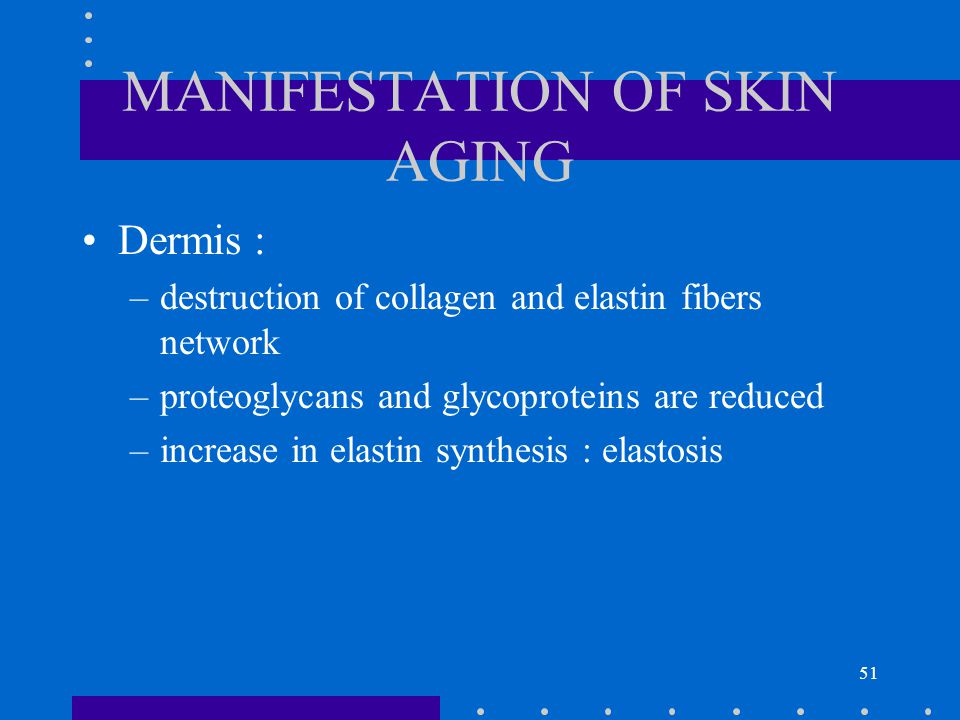 51 MANIFESTATION OF SKIN AGING Dermis : –destruction of collagen and elastin fibers network –proteoglycans and glycoproteins are reduced –increase in