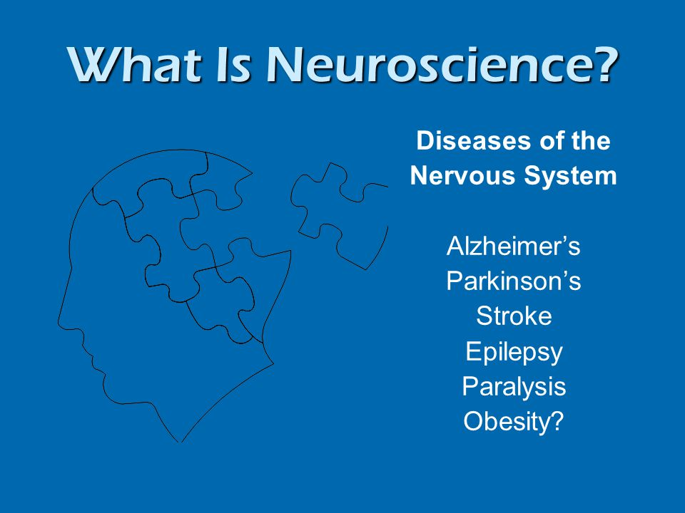 What Is Neuroscience.