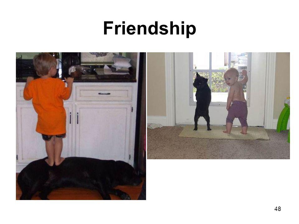 Friendship 48