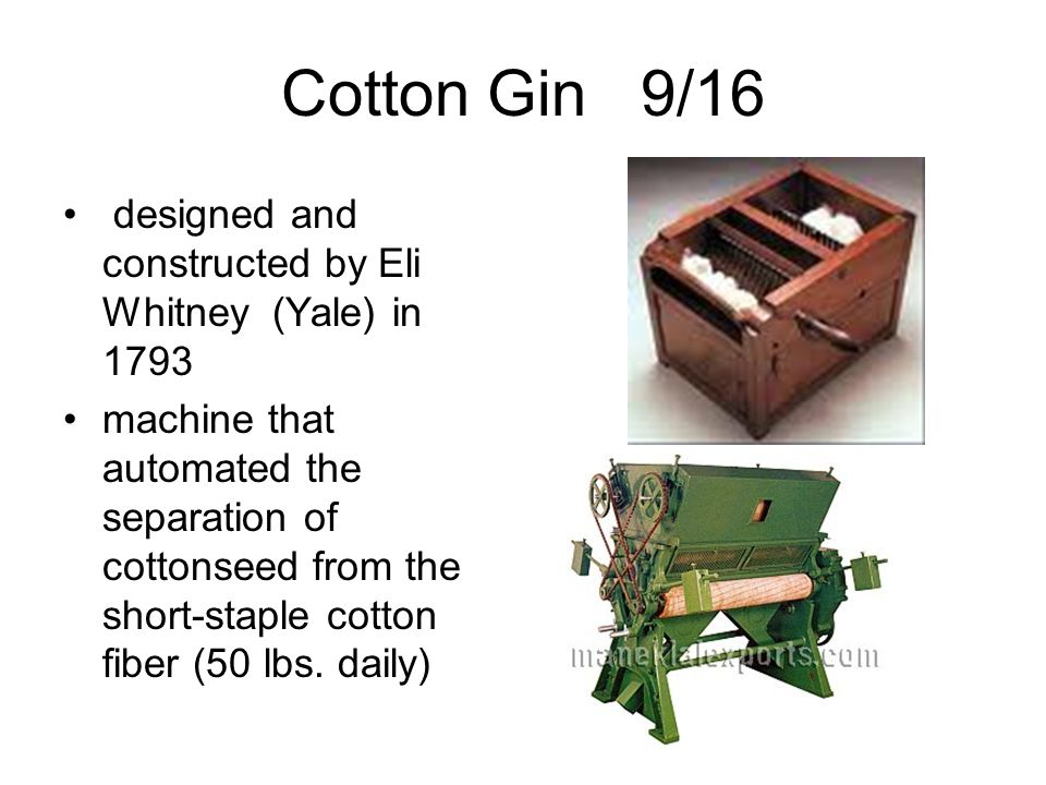 Cotton Gin 9/16 designed and constructed by Eli Whitney (Yale) in 1793 machine that automated the separation of cottonseed from the short-staple cotto