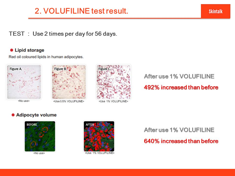 3 2. VOLUFILINE test result. TEST : Use 2 times per day for 56 days. After use 1% VOLUFILINE 492% increased than before After use 1% VOLUFILINE 640% i