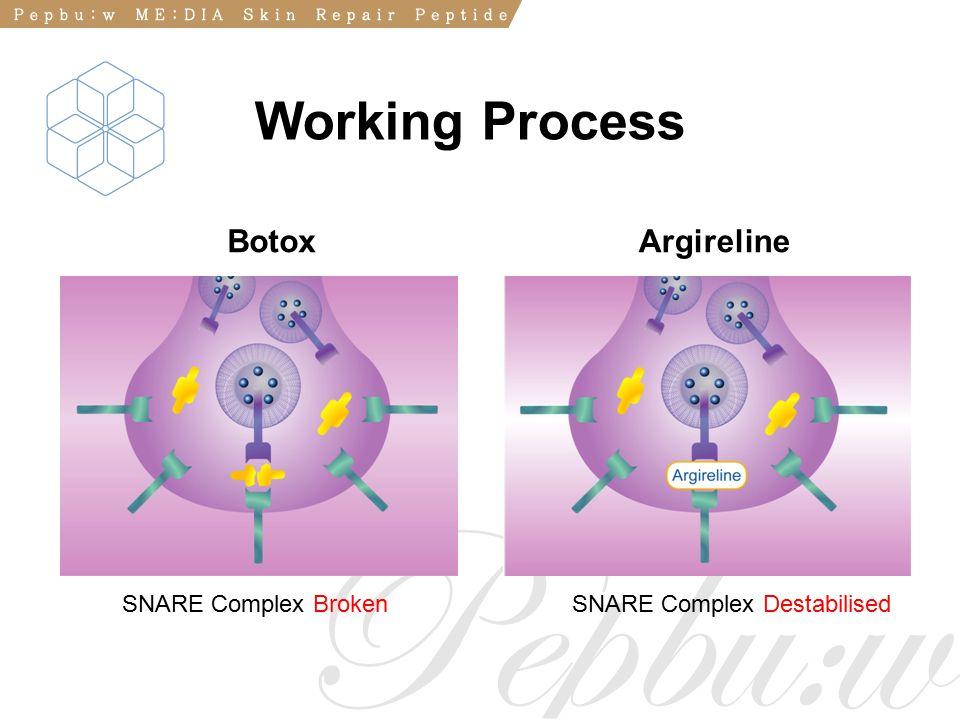 BotoxArgireline SNARE Complex BrokenSNARE Complex Destabilised Working Process