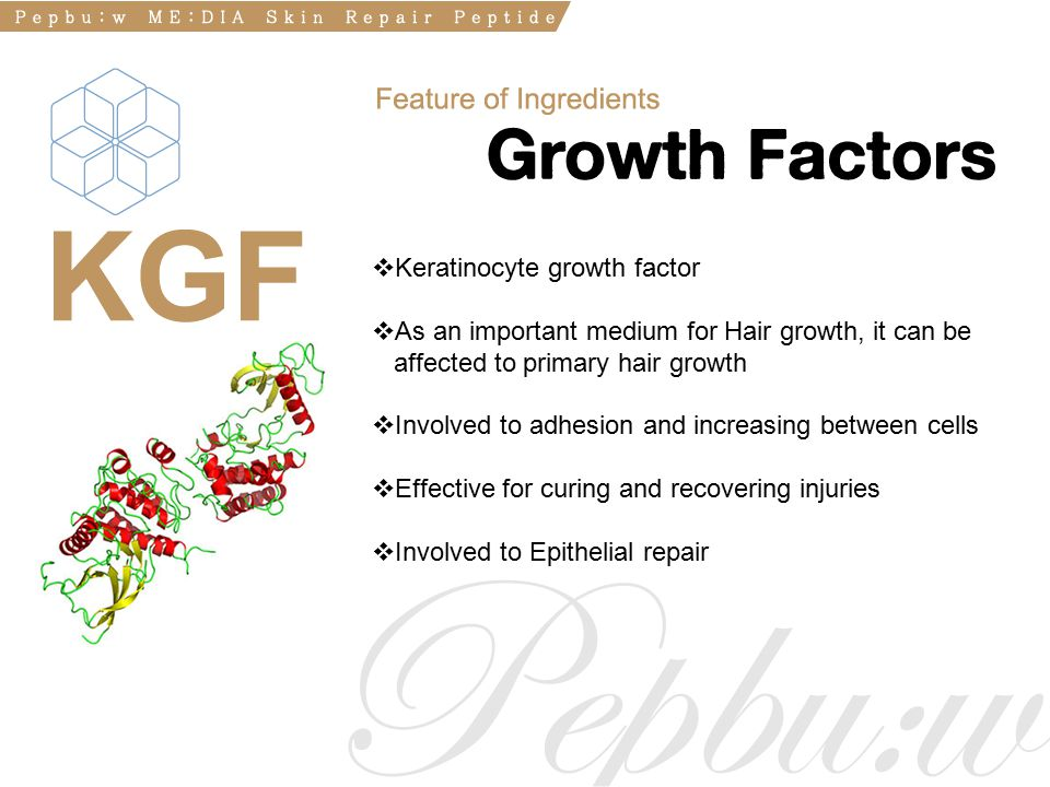  Keratinocyte growth factor  As an important medium for Hair growth, it can be affected to primary hair growth  Involved to adhesion and increasing