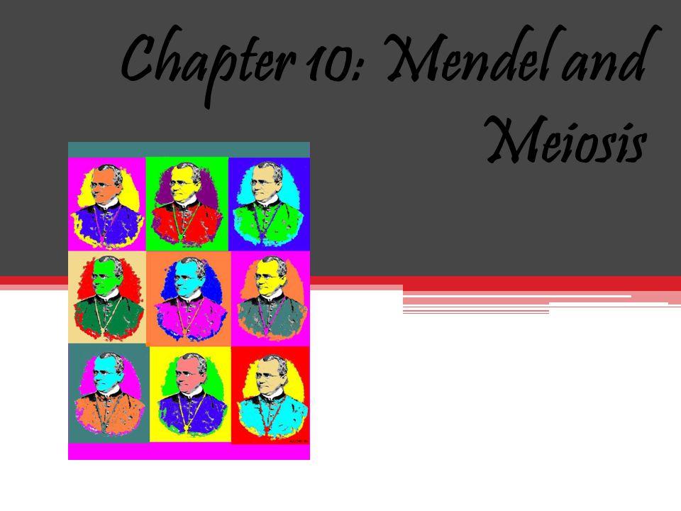 Chapter 10: Mendel and Meiosis September 28 2010