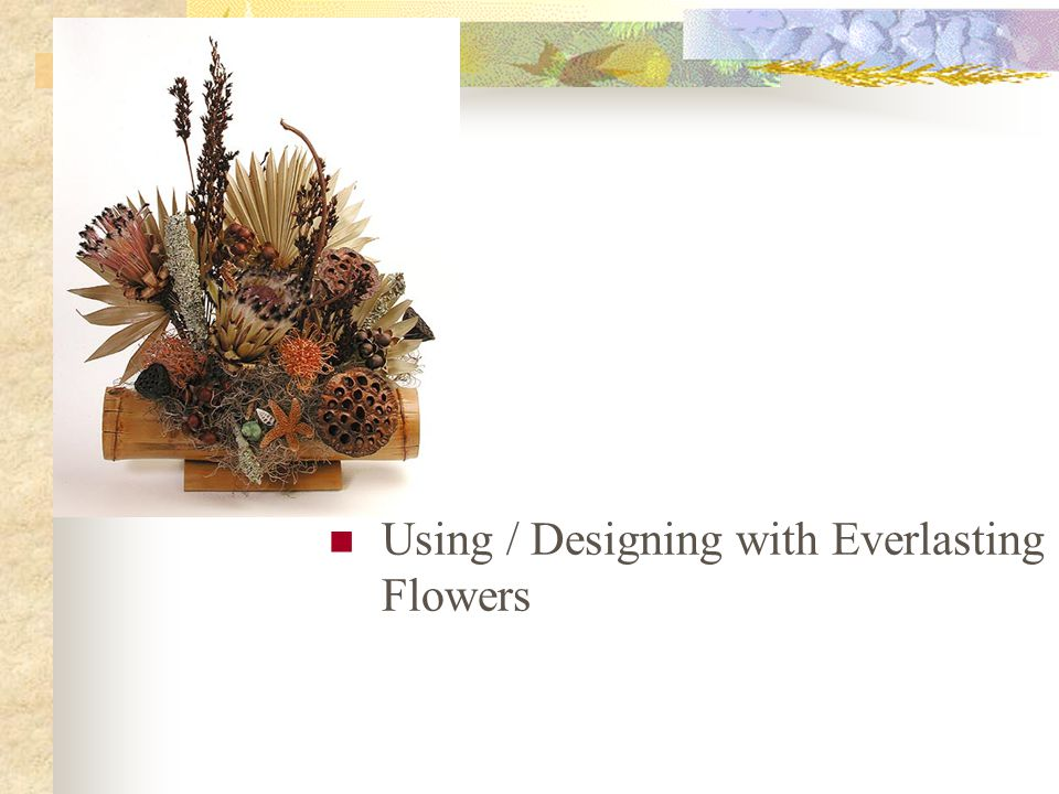 Using / Designing with Everlasting Flowers