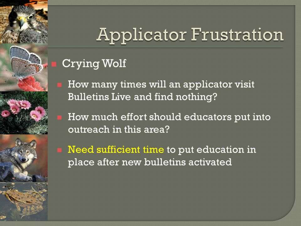 Crying Wolf How many times will an applicator visit Bulletins Live and find nothing? How much effort should educators put into outreach in this area?