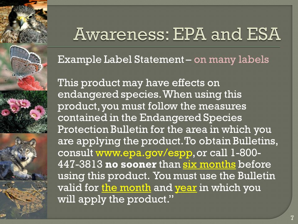Example Label Statement – on many labels This product may have effects on endangered species. When using this product, you must follow the measures co