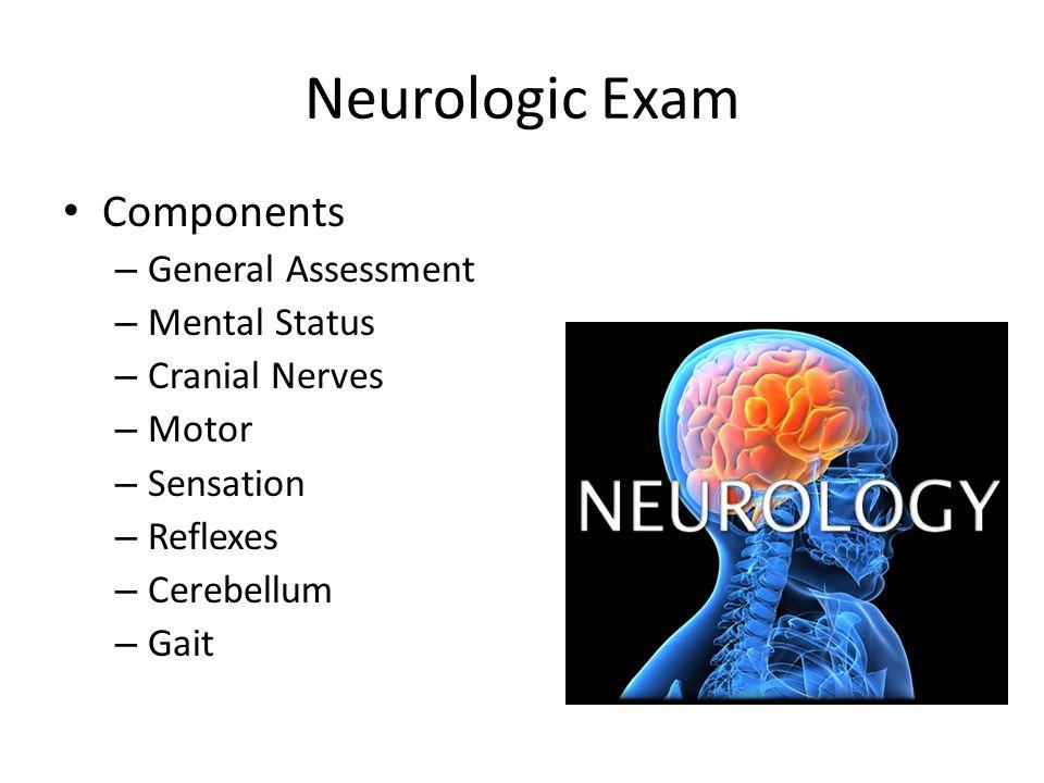 Neurologic Exam Components – General Assessment – Mental Status – Cranial Nerves – Motor – Sensation – Reflexes – Cerebellum – Gait