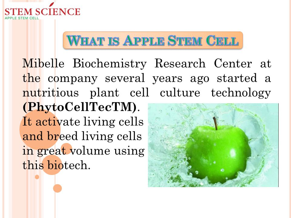 Mibelle Biochemistry Research Center at the company several years ago started a nutritious plant cell culture technology (PhytoCellTecTM).