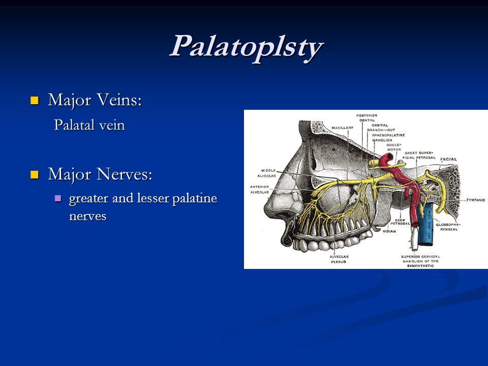 Palatoplsty Major Veins: Major Veins: Palatal vein Major Nerves: Major Nerves: greater and lesser palatine nerves greater and lesser palatine nerves
