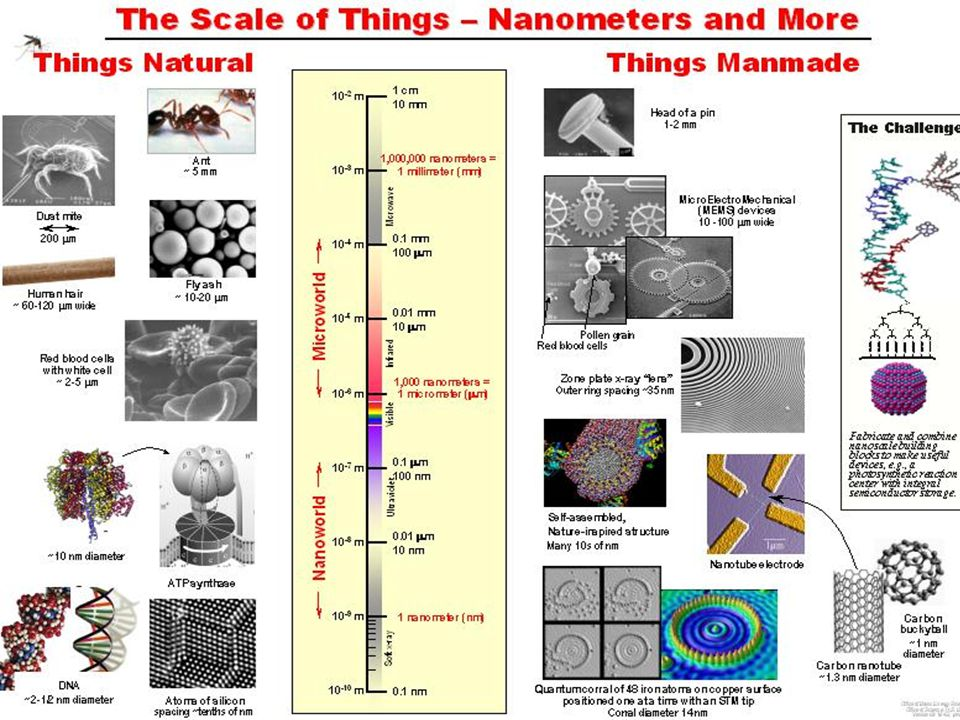 Forbes Top 10 Nanotech Products--2004 1.Footwarmers 2.Washable Bed Mattress 3.Golf Balls and the Nano Driver 4.Nano Skin Care 5.Nanosilver Wound Dressing for Burn victims 6.Military-Grade Disinfectants 7.BASF Superhydrophobic Spray 8.Clarity Defender Automotive-Glass Treatment 9.Flex Power Joint and Muscle Pain Cream 10.3M Dental Adhesive