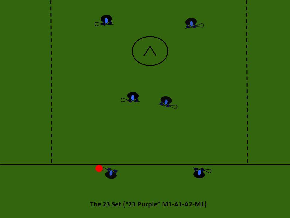 "The 23 Set (""23 Purple"" M1-A1-A2-M1)"