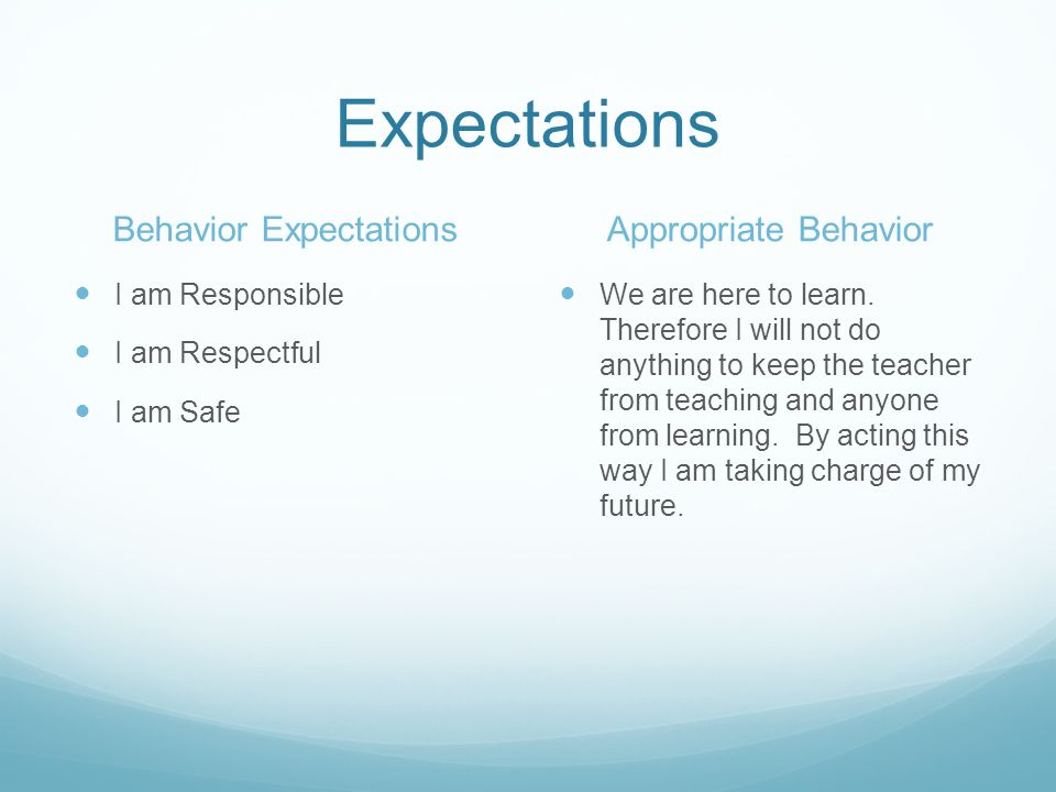 Expectations Behavior Expectations I am Responsible I am Respectful I am Safe Appropriate Behavior We are here to learn.