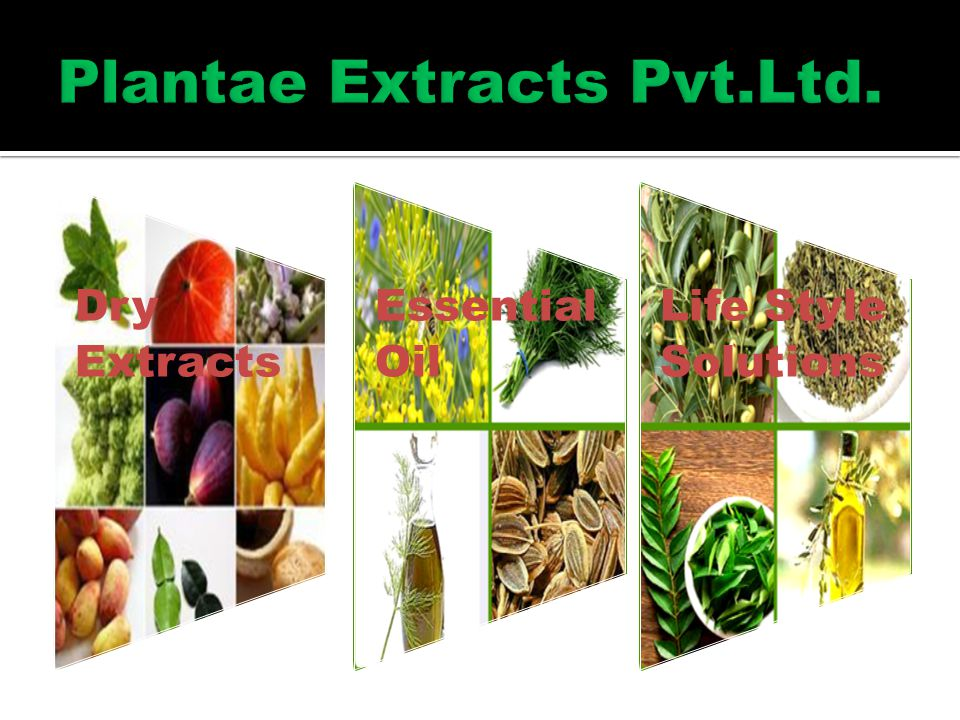 Dry Extracts Essential Oil Life Style Solutions