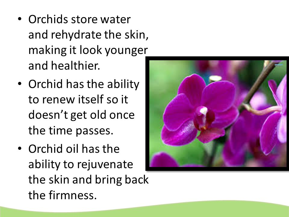 Orchids store water and rehydrate the skin, making it look younger and healthier. Orchid has the ability to renew itself so it doesn't get old once th