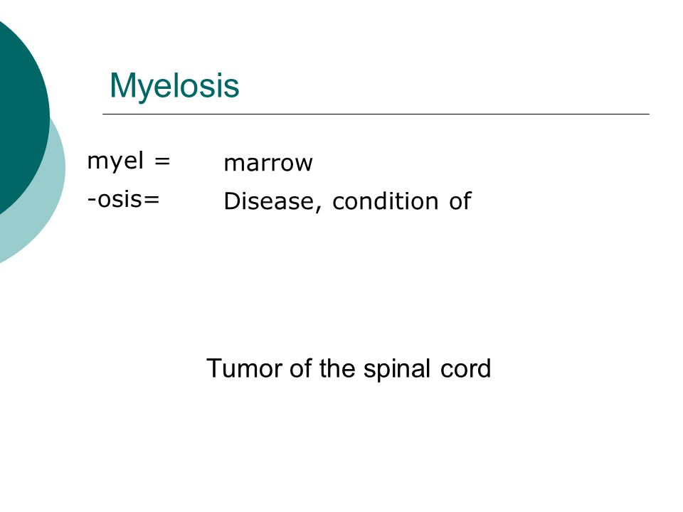 Myelosis myel = -osis= marrow Disease, condition of Tumor of the spinal cord